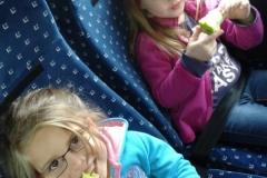 almaszuret (8)
